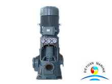 Electric Cast Iron Vertical Self-priming Centrfugal Water Pump for Boat