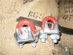 Austria Drop Forged Malleable Steel Type Galvanized Wire Rope Clips