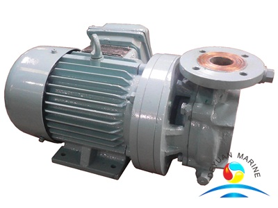 CWF Series 10m3/h Marine Horizontal Crushing Pump