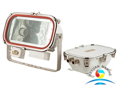 TG6 Flood Light